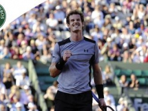 Andy Murray 3:1 David Ferrer