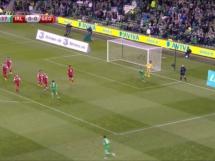 Irlandia 1:0 Gruzja