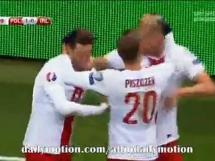 Polska - Irlandia 2:1