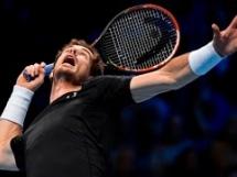 Andy Murray 2:0 David Ferrer