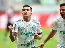 Palmeiras 3:1 Santa Cruz