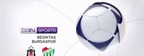 Besiktas Stambuł 2:1 Bursaspor