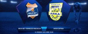 Termalica Bruk-Bet Nieciecza 1:1 Arka Gdynia