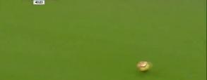 Tottenham Hotspur 2:0 Brighton & Hove Albion