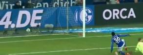Schalke 04 2:1 Hoffenheim