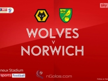 Wolverhampton 2:2 Norwich City