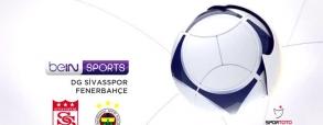 Sivasspor 1:2 Fenerbahce