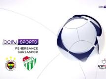 Fenerbahce 2:1 Bursaspor