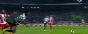 Sporting Lizbona - Aves
