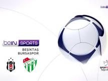Besiktas Stambuł 2:0 Bursaspor