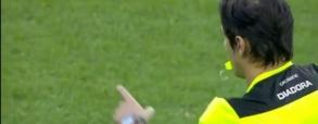 Torino 2:1 Fiorentina