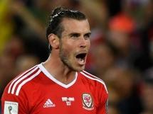 Fantastyczny gol Bale z Irlandią!