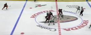 Anaheim Ducks 2:4 Minnesota Wild