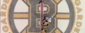 Boston Bruins 3:5 Tampa Bay Lightning