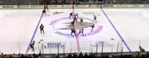 Anaheim Ducks 6:2 Ottawa Senators