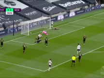 Tottenham Hotspur 1:1 Newcastle United