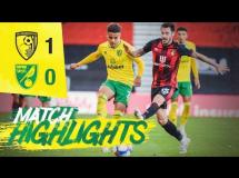 AFC Bournemouth 1:0 Norwich City
