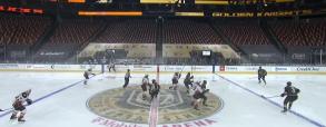 Vegas Golden Knights 5:2 Anaheim Ducks