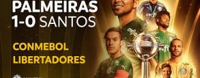 Palmeiras 1:0 Santos