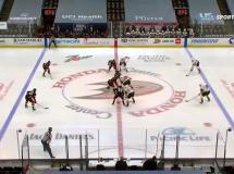Anaheim Ducks 6:3 Vegas Golden Knights